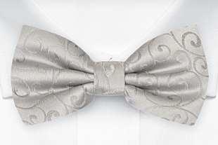 SNAZZY Silver fluga